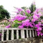 Graanhuisjes Asturias