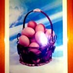 De eieren
