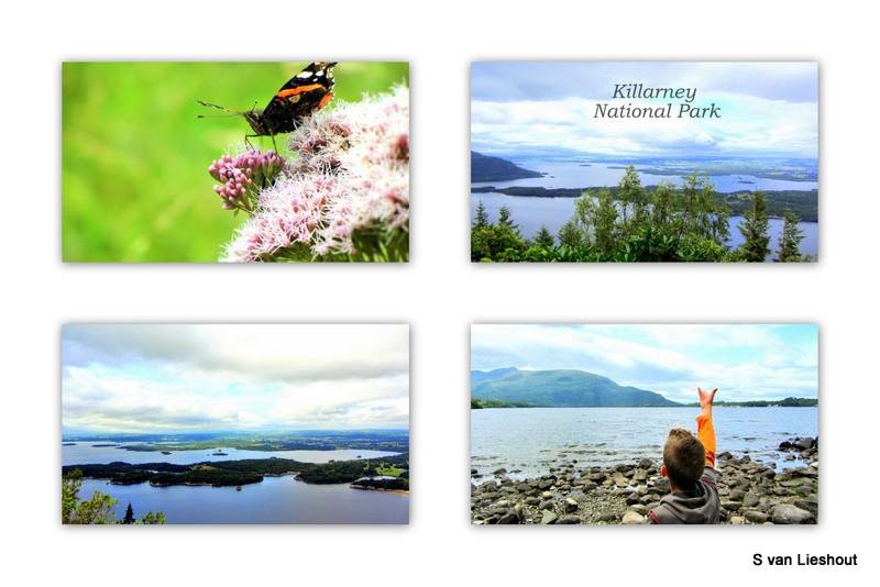 Killarney national park, Ierland