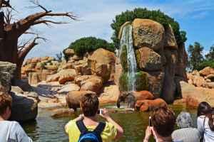 Bezoek het natuurpark in Valencia