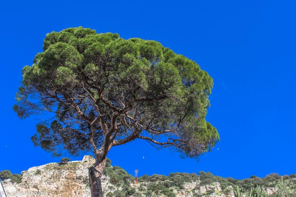 kabelbaan Gibraltar