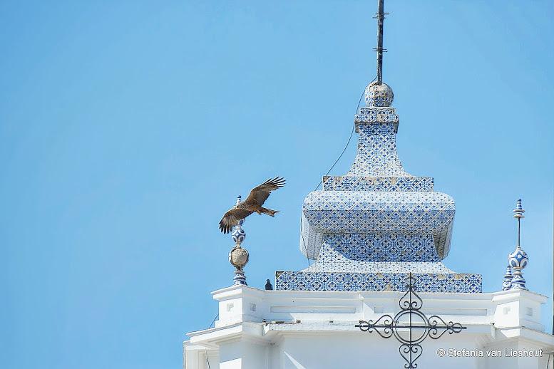 Het hoogtepunt van Huelva