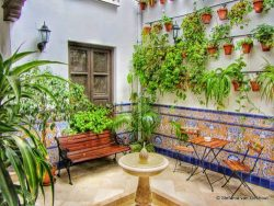 Hotels en Appartementen in Malaga