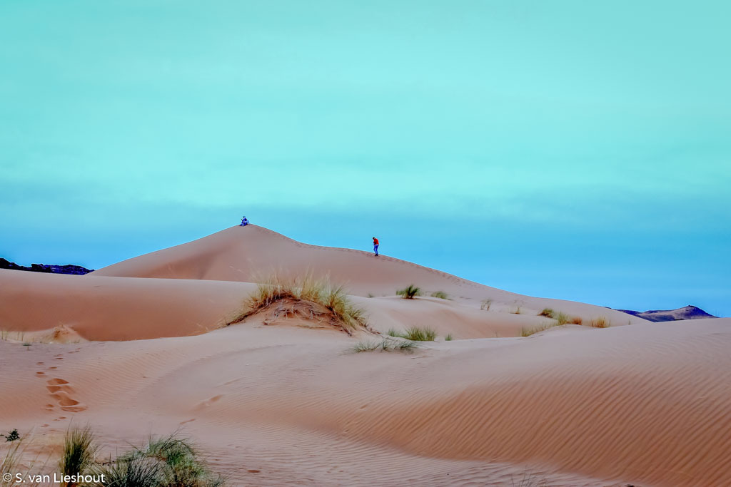 zandduinen woestijn