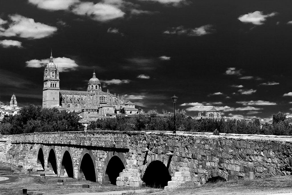 Kathedraal Salamanca met Romeinse brug op de voorgrond