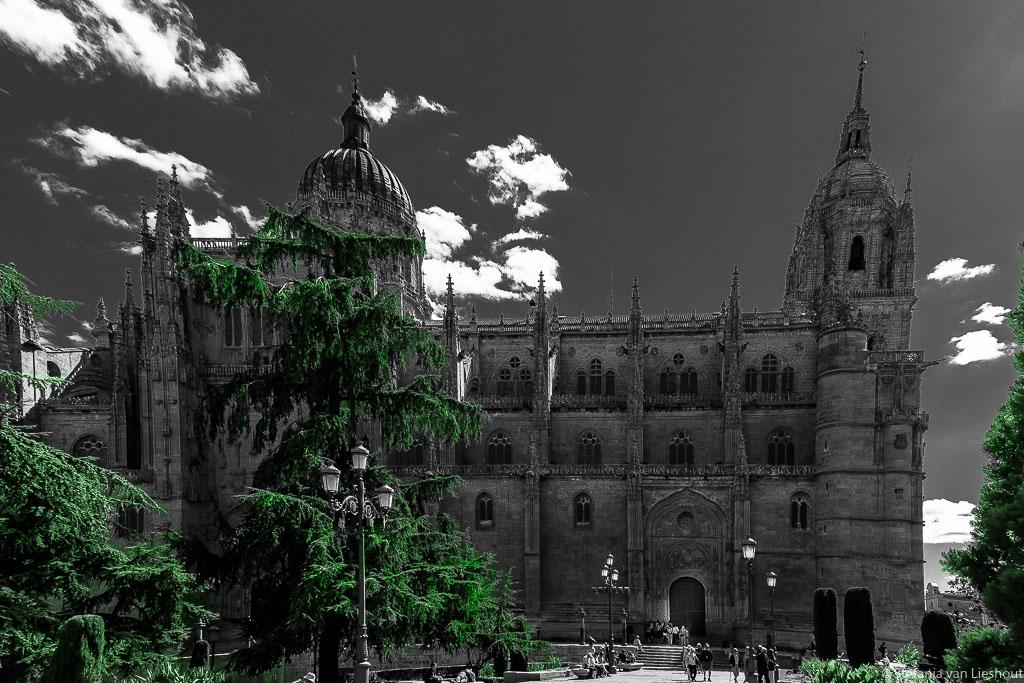 Oude kathedraal Salamanca