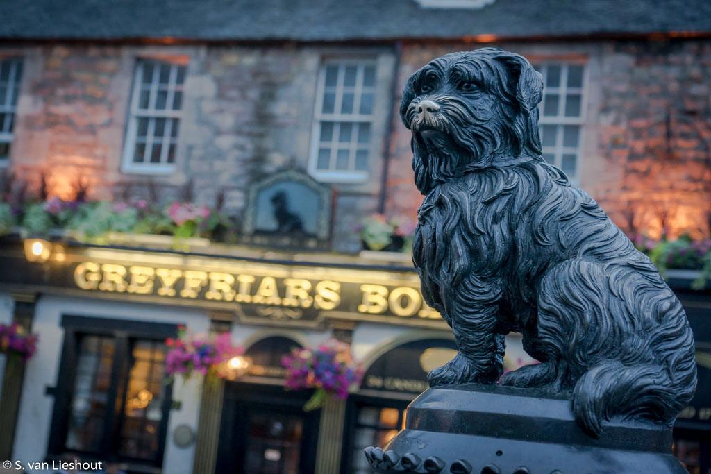 Edingburgh Bobby dog