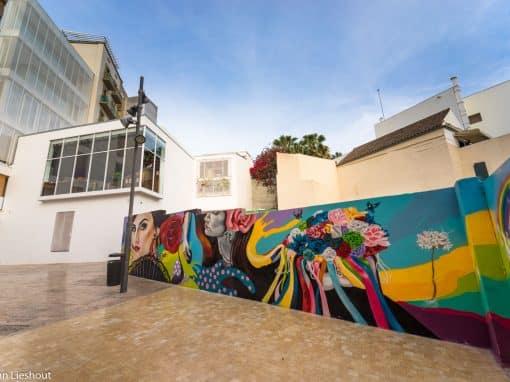 #2 Mural Doger