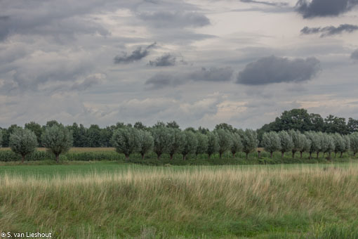 Netherlands flat land