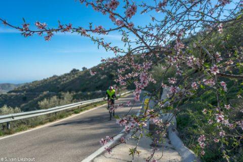 Malaga Montes de Malaga fietstocht