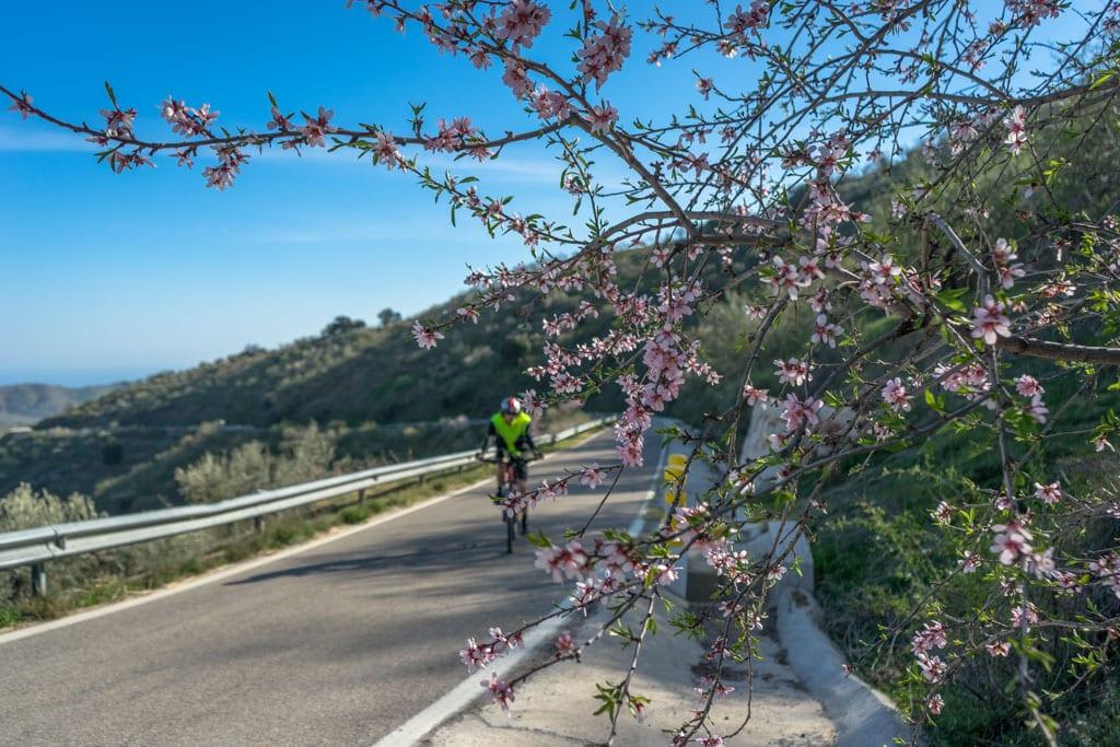 Fietsroute Montes de Malaga