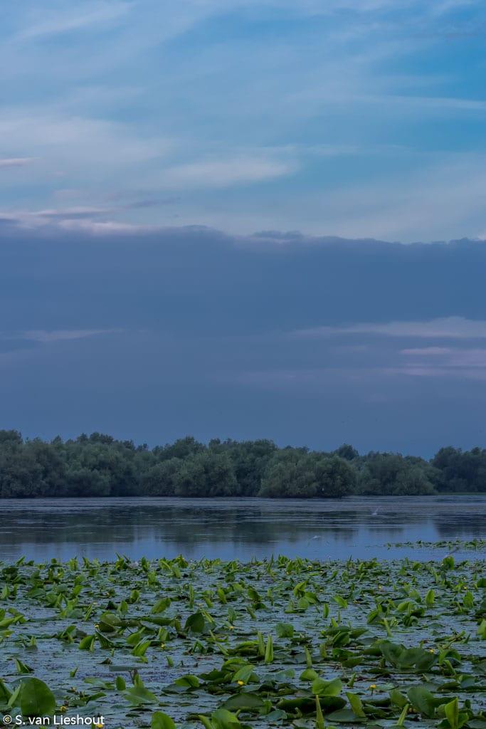 Dobrogea Romania Danube Delta