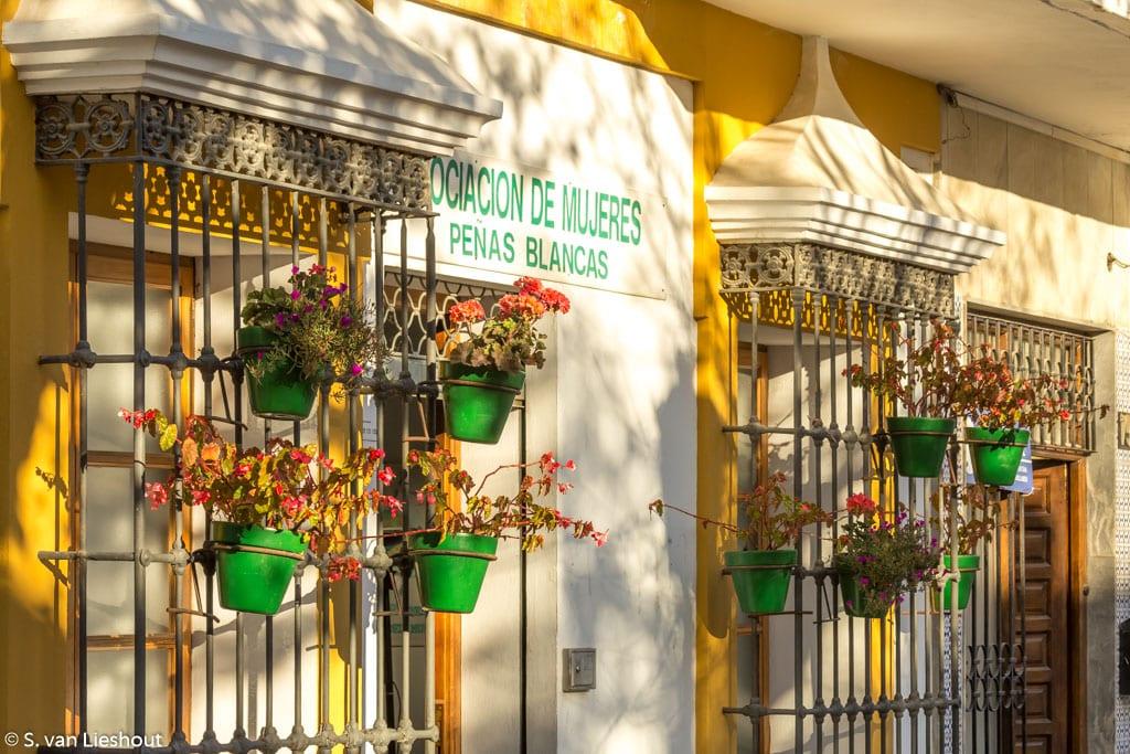 Estepona flower pots