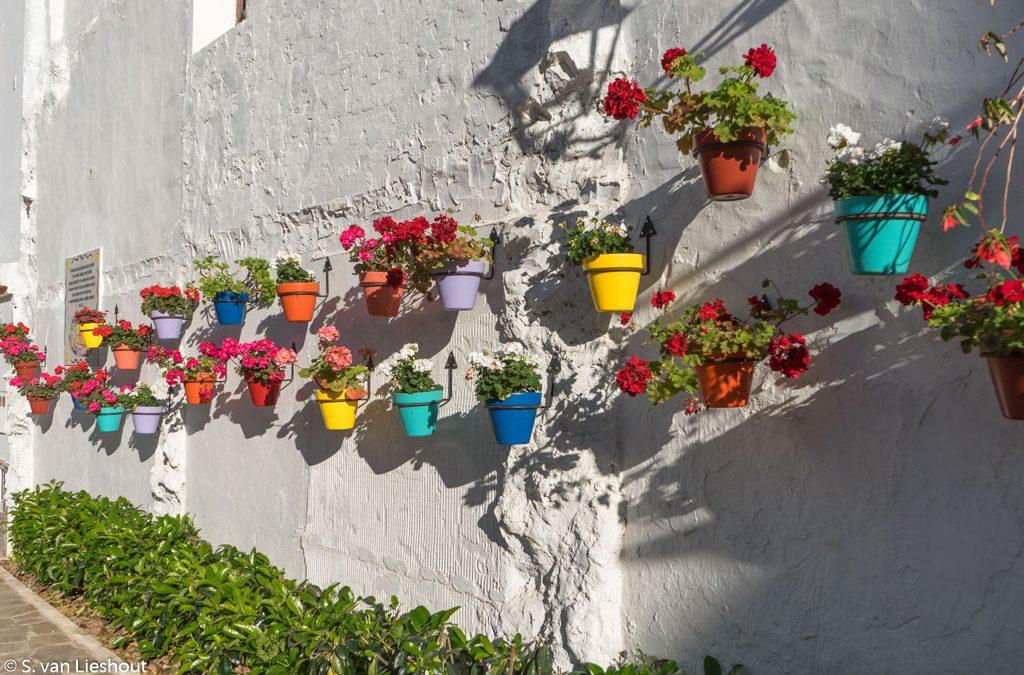 Estepona, het mooiste stadje aan de Costa del Sol