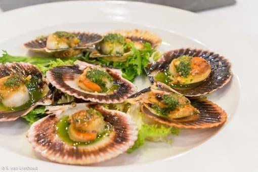Ferrol zeevruchten