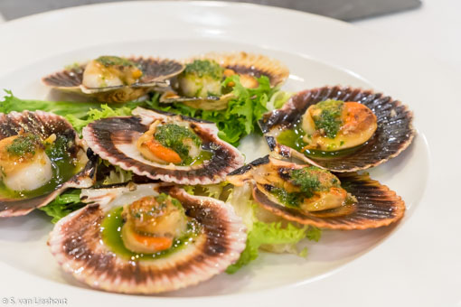 Ferrol seafood