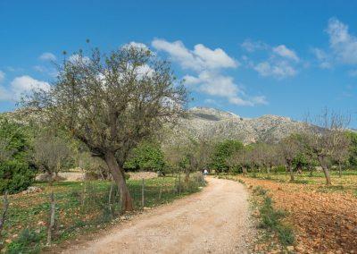 Mallorca natuur