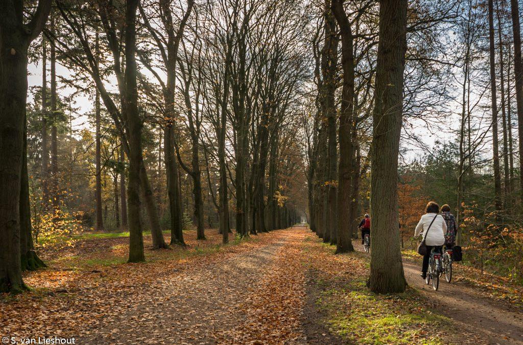 Een prachtige fietstocht door de Utrechtse Heuvelrug