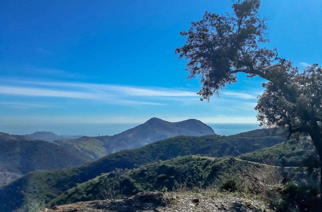 Malaga, te voet van hartje centrum naar hartje natuur