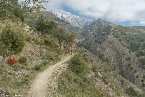 Maroma hoogste berg in Malaga