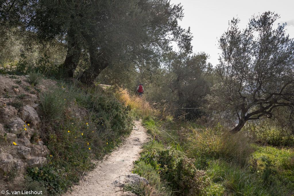 Hiking Axarquia