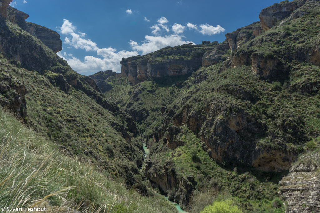canyon Bermejales