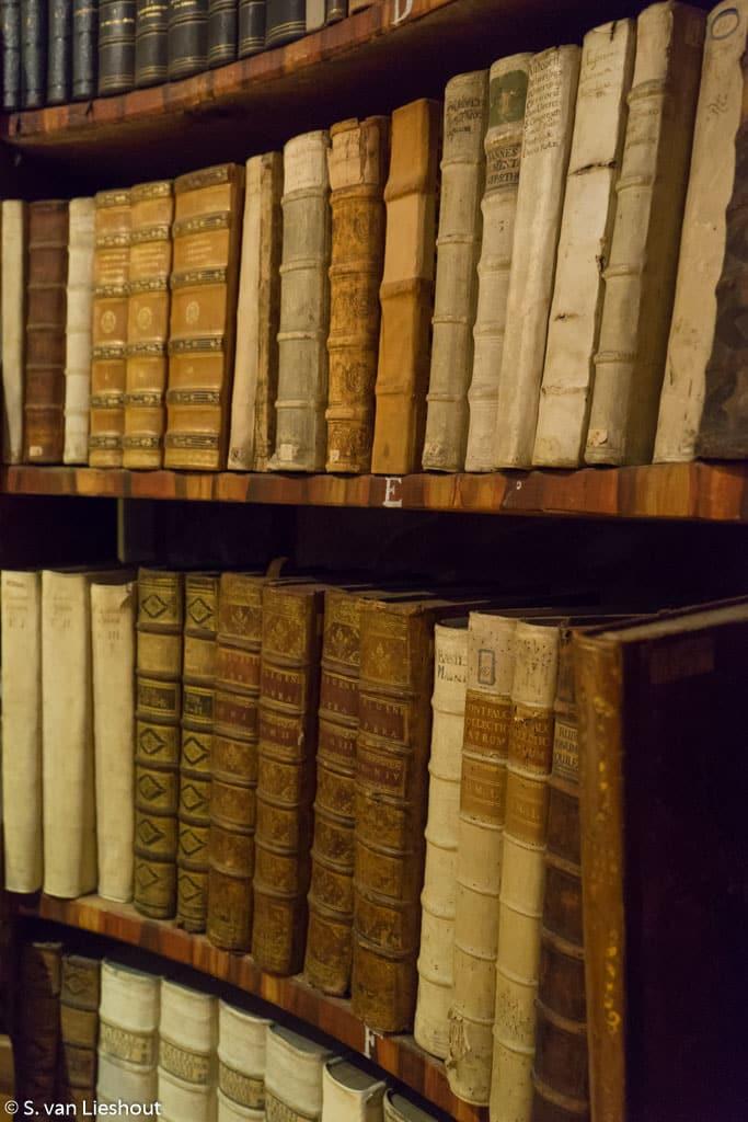 Stift Rein library