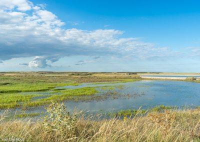 Nationaal park Platier d'Oye