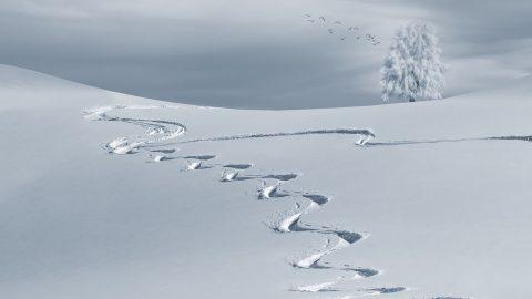wintersportvakantie Val Thorens