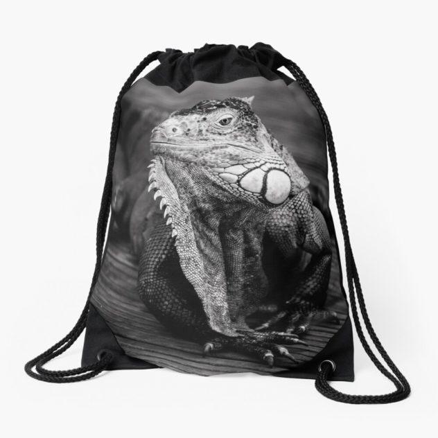 Bag iguana