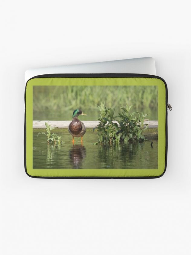 Laptop sleeve wild duck