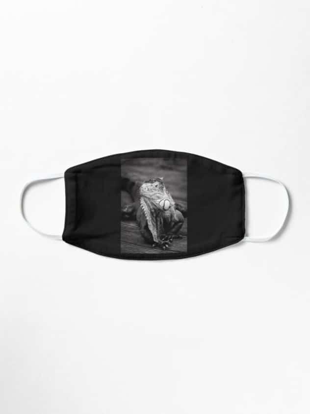 mask iguana
