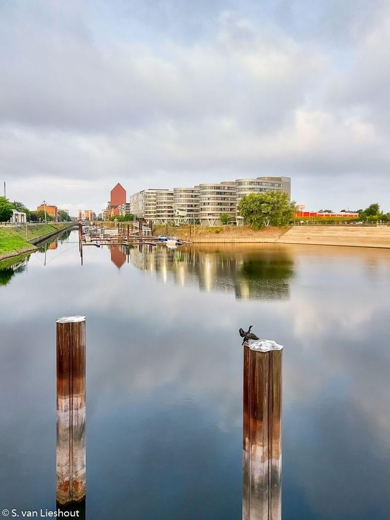 Duisburg Rijn Five Boats