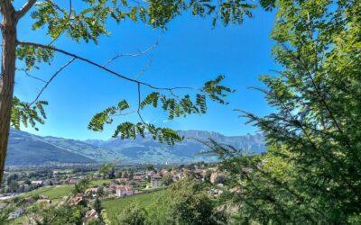 Liechtenstein, no questions asked