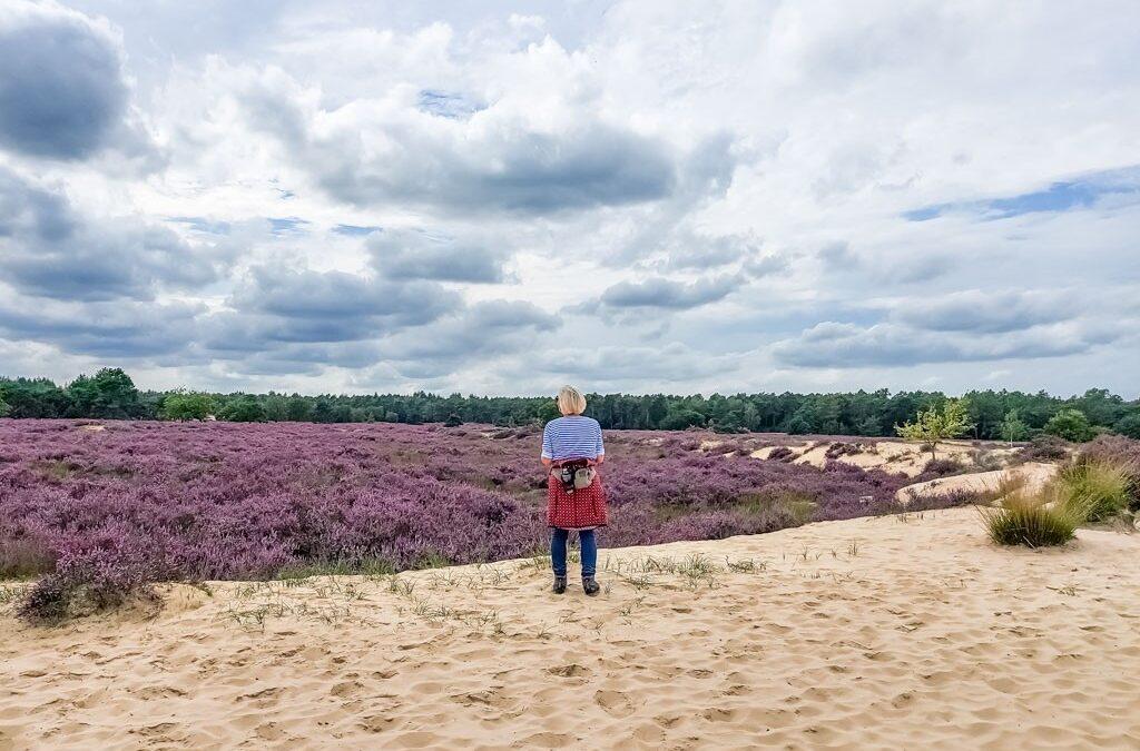 Loonse en Drunense Duinen, een stukje Afrikaanse Savanne in Nederland