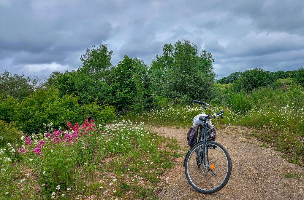 Cambridgeshire: fietstocht door het 'echte' Engeland